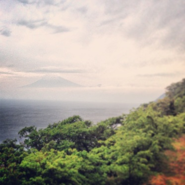 Fuji ganz schüchtern