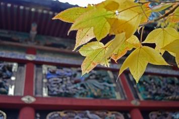 nikko_toshogu_shrine