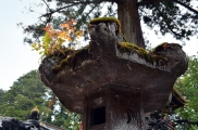 nikko_toshogu_shrine2