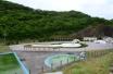 lonley pool