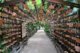 Aoshima Shrine