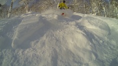 Shredding the Hokkaido Powder