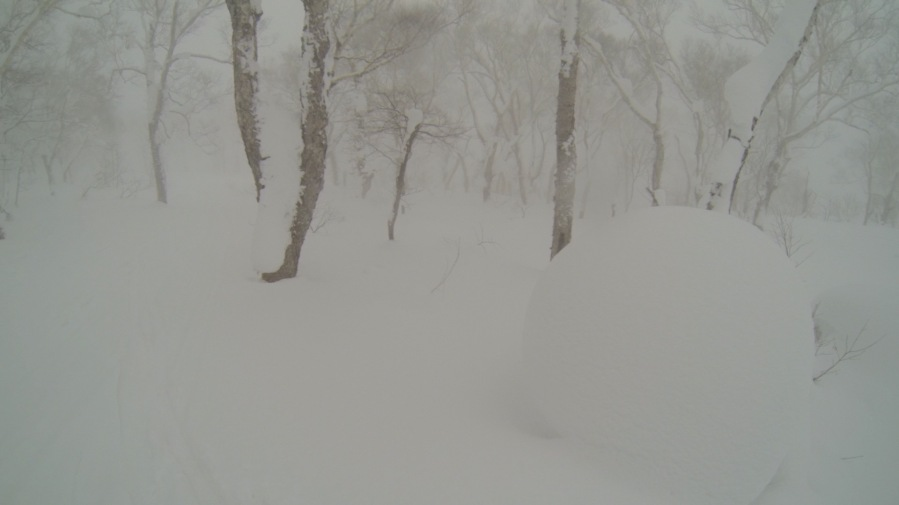Lost in the Snow storm